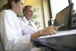 Papel de los ordenadores en el Laboratorio de Tecnología Médica
