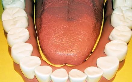 Requisitos del sistema Dentrix