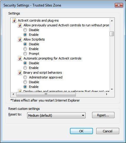 Cómo activar los controles ActiveX