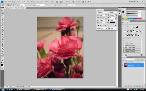 Cómo cambiar el color de algo en una foto con Photoshop