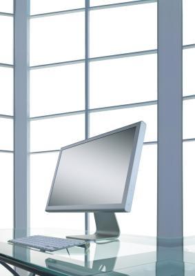 """17 """"Especificaciones del monitor"""