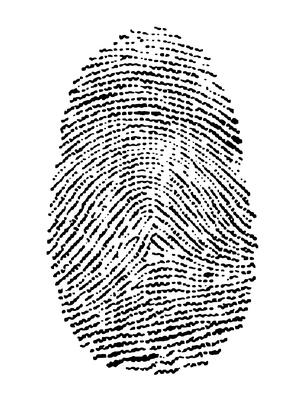 Herramientas biométricos utilizados para la seguridad de red