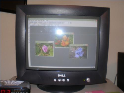 Cómo transferir fotografías digitales desde su cámara digital a su ordenador