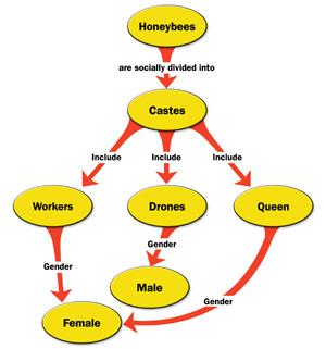Cómo hacer un mapa conceptual en Microsoft Word