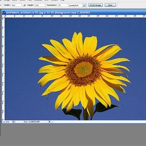 Cómo convertir una imagen en un dibujo al carbón en Photoshop