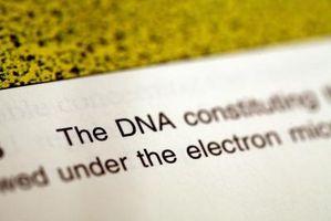 Cómo leer Forensic Science Journals Online